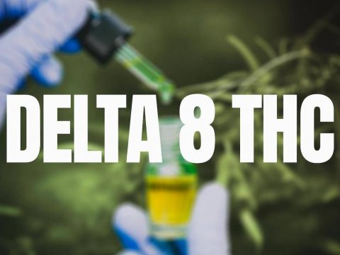 A buying guide to select the best delta 8 gummies
